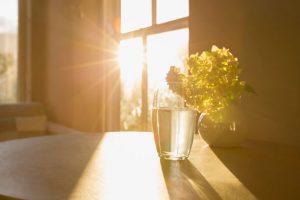 6 itens que sua casa precisa para ficar mais energizada