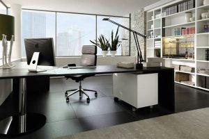 Feng Shui para home office: harmonia entre casa e trabalho