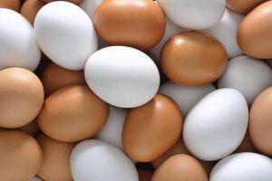 Mitos sobre alimentos – e a verdade por trás deles